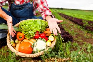 Ekološki poljoprivredni gospodarstvenik